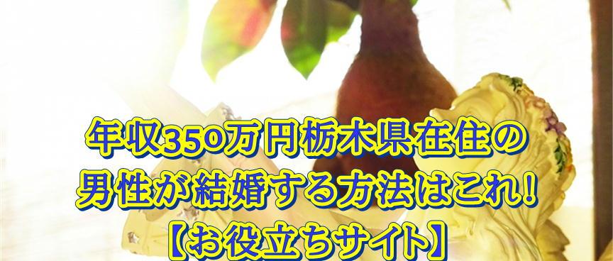 年収350万円栃木県在住の男性が結婚する方法はこれ!
